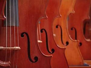 Plusieurs violons2